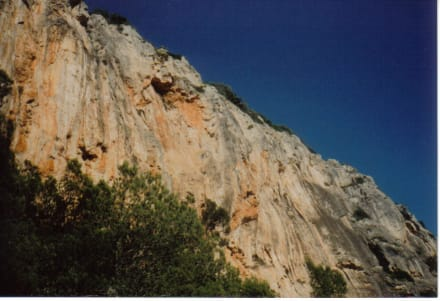 Auf halber Strecke zum Castell d' Alaro - Castell d'Alaro