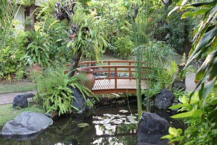kleine br cke im garten bild hotel poppies in kuta bali indonesien. Black Bedroom Furniture Sets. Home Design Ideas