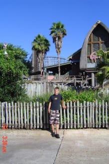 Holzachterbahn Gwazi - Busch Gardens