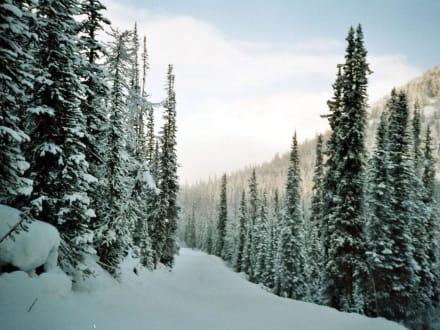 Lacke Louise, to Base - Skigebiet Lake Louise