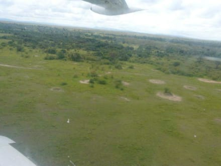 Anflug in die Massai Mara - Masai Mara Safari