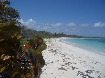 Playa Bonita - Strand Santa Lucia