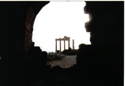 Blick aus einer Ruine - Apollon Tempel