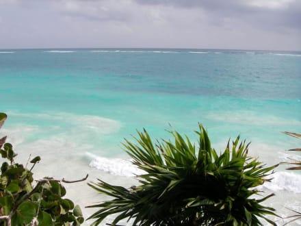 Strand/Küste/Hafen - Ruinen von Tulum