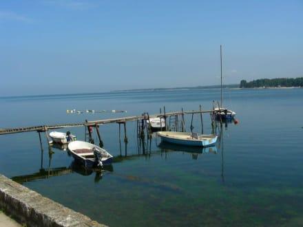 Fischerboote - Hafen Porec