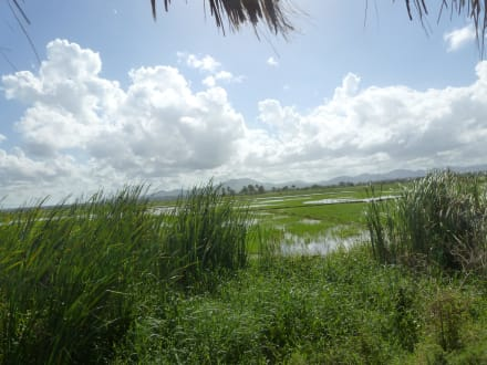 Sonstiges Landschaftmotiv - Ausflug Eco-Caribe Tour