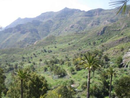 Ausblick - Tal von Benchijigua