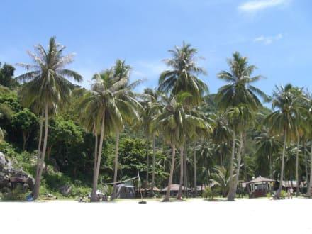 Strand - Ang Thong Marine National Park