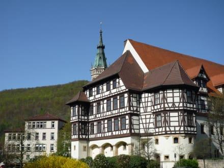 Residenzschloß Bad Urach - Schloss Urach