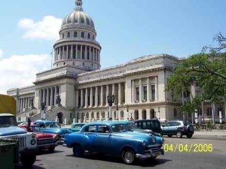 Capitol von Havanna - Kapitol