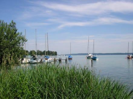 Seeblick - Starnberger See