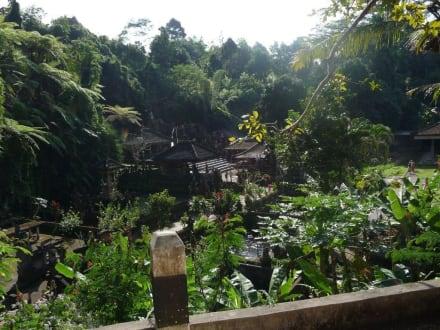 Idyllische Tempelanlage P. Gunung Kawi - Königsgräber von Gunung Kawi