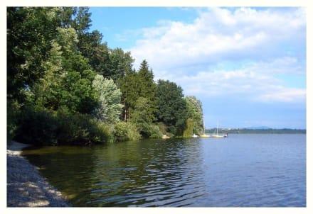 Blick über den Waginger See - Waginger See