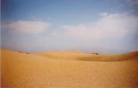 Gran Canaria Maspalomas Sanddünen - Dünen von Maspalomas