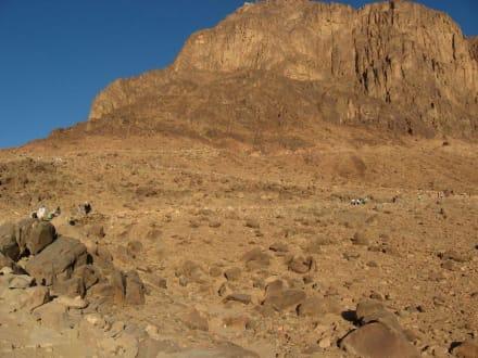 Da ganz nach oben müssen wir - Mosesberg (Gebel Musa) / Berg Sinai