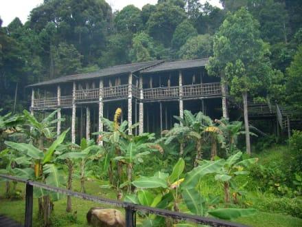 Haus der Orang Ulu - Sarawak Cultural Village