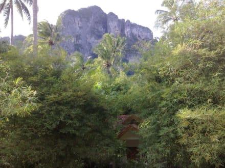 Beim Frühstück - Rainforest Tour