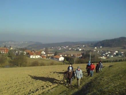 Ponywanderung - Runding
