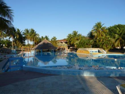 Piscine  - Club Amigo Carisol Los Corales Hotel