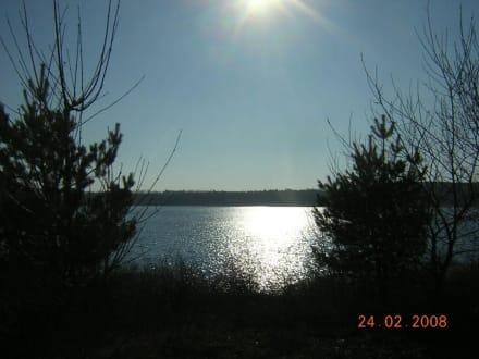 Am See - Senftenberger See