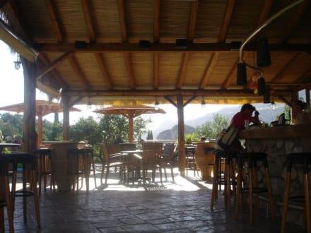 Bar am Nachmittag - Shambala Bar
