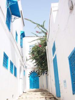 """Die """"Blau-weisse Stadt"""" - Künstlerdorf Sidi Bou Saïd"""
