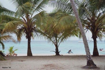 Saona-Ausflug - Isla Saona