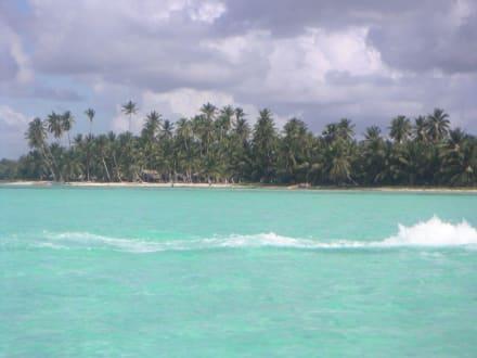 Küste der Insel Saona - Isla Saona