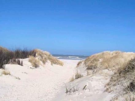 In den Dünen - Strand Baltrum