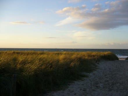 Kühlungsborn Strand - Strand Kühlungsborn
