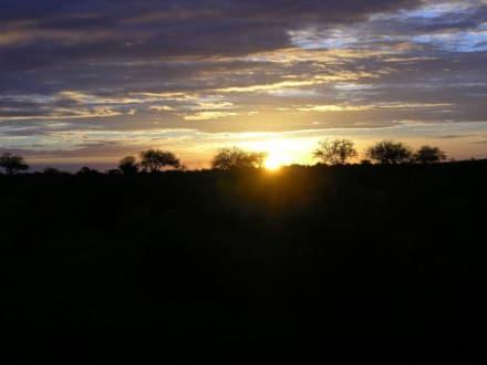 Diese Farben! - Tsavo Ost Nationalpark