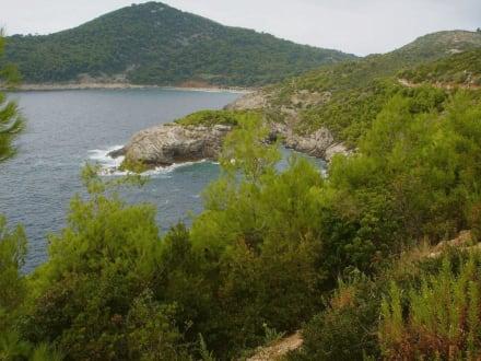 Küste - Lopud