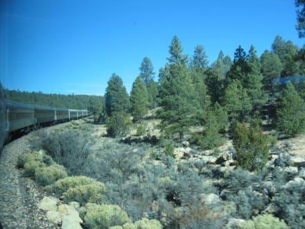 Zugfahrt von Williams zum Grand Canyon - Dampflok an den Canyon