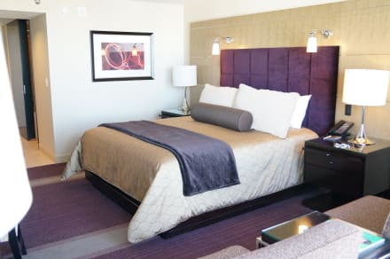 Aria Resort & Casino in Las Vegas | HolidayCheck.