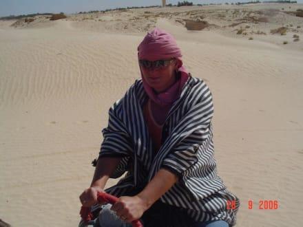 Kamelausritt - Sahara