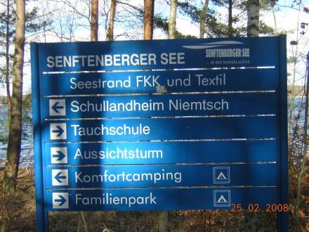 Tafel am See - Senftenberger See