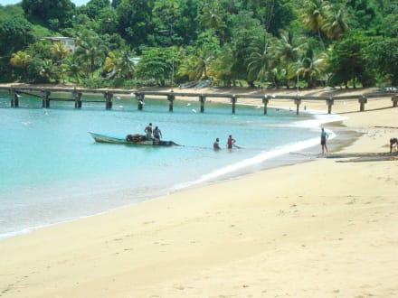Beach/Coast/Harbor - Palatuvier Bay