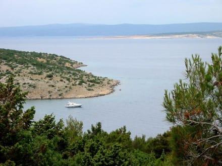 Kroatien / Insel Krk - Insel Krk