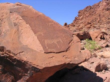 Twyfelfontein - zweifelhafte Quelle - Felsengravuren