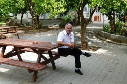 Unser Busfahrer im Orangenhain - Efe's Ausflüge