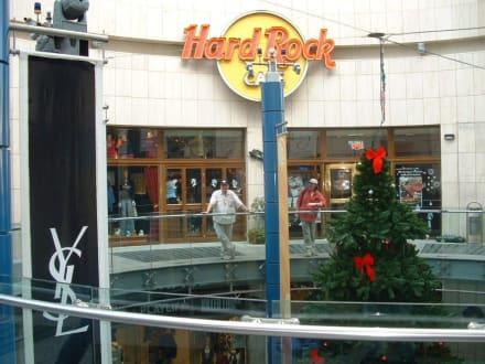 Meine zwei Freunde - Hard Rock Café
