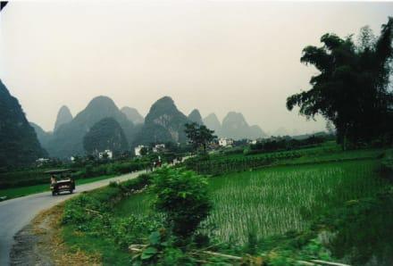 Karsthügel am Li-Fluss - Reisfelder