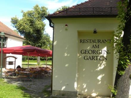 schloss georgium restaurant georgengarten bild schloss georgium in dessau. Black Bedroom Furniture Sets. Home Design Ideas