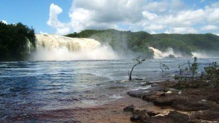 Canaimawasserfall - Wasserfälle von Canaima - Salto Sapo