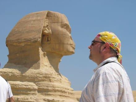 wo ist die Nase - Sphinx von Gizeh