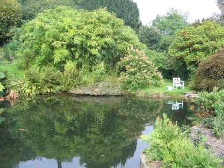 Chartwell Gartenteich - Chartwell