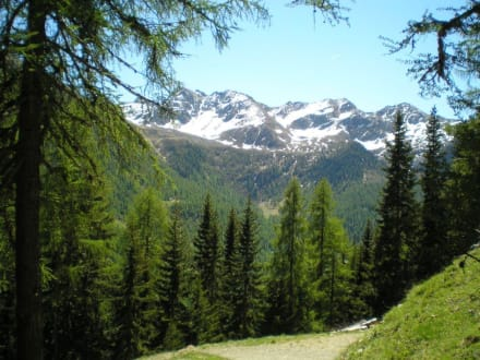 Aufstieg durchs Klapfbergtal - Wandern Ultental