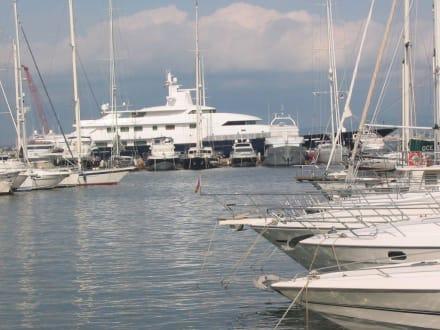 Yachthafen von Palma - Hafen Palma de Mallorca