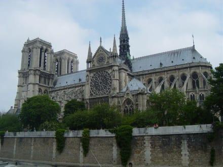 Notre Dame - Bootstour Seine Paris