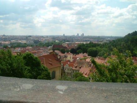 Aussicht von der Prager Burg - Prager Burg / Hradschin